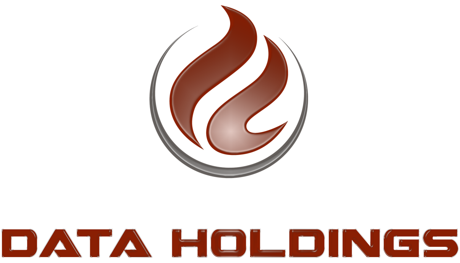 Data Holdings Logo